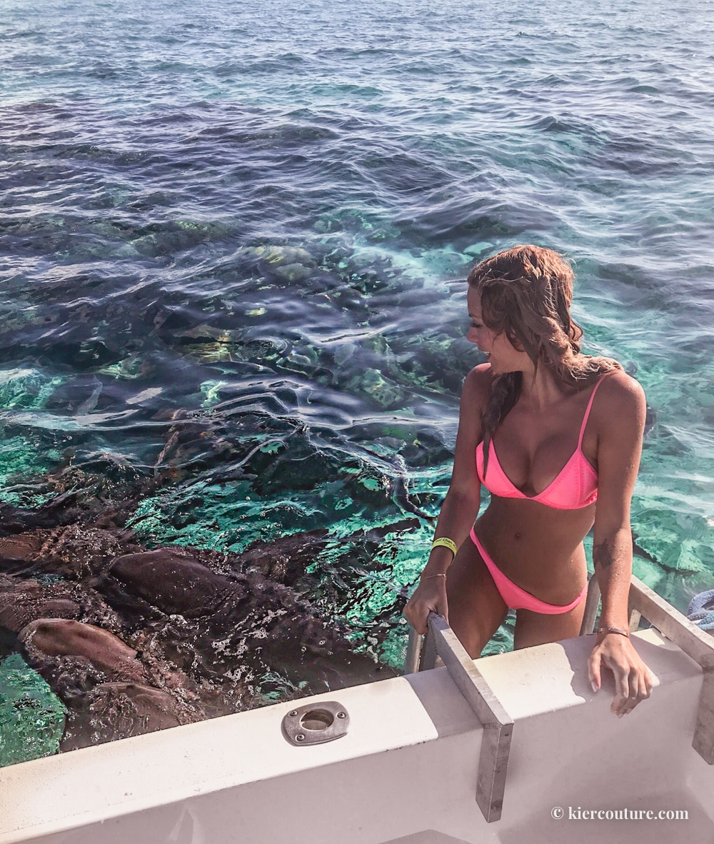 girl with nurse sharks