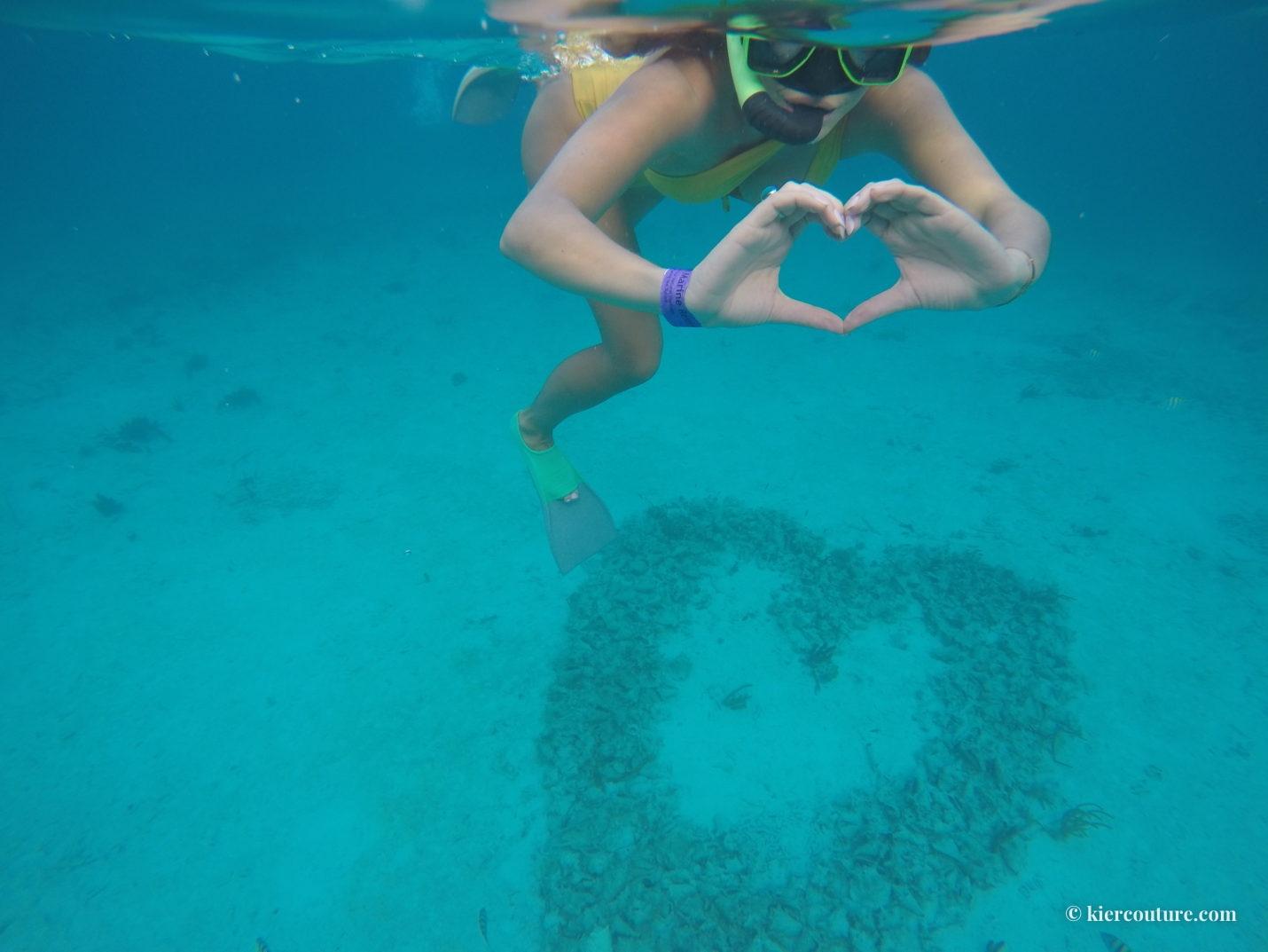 matachica turtle reef snorkling
