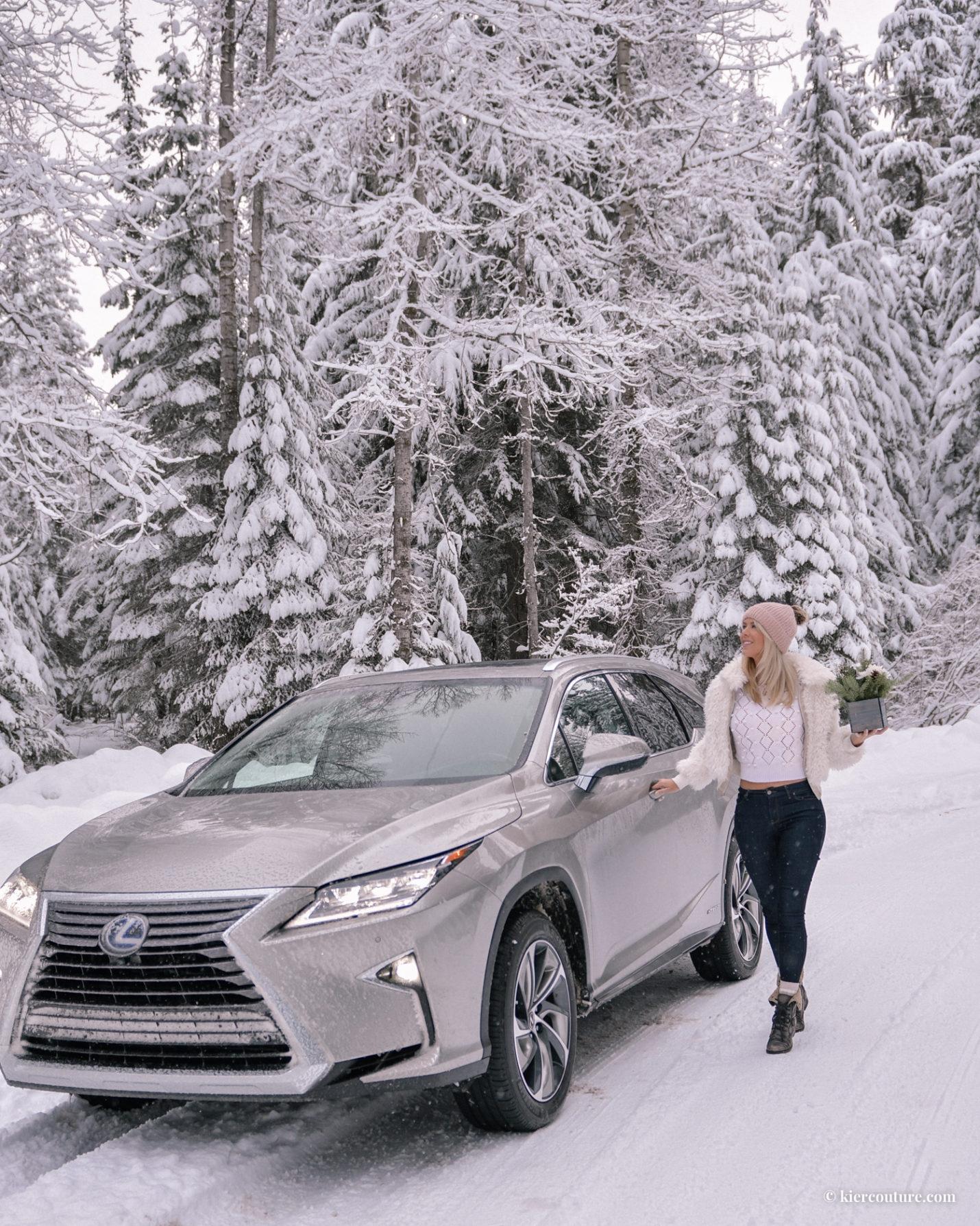 2019 Lexus Hybrid